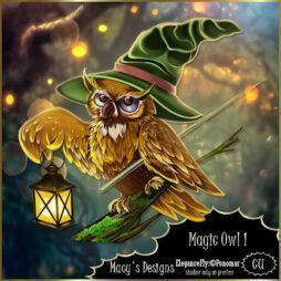 Magic Owl 1