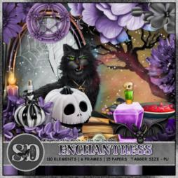 Enchantress Kit Match