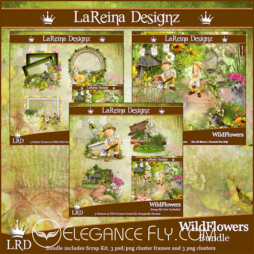 Wild Flowers – Bundle