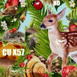 CU/PU FOREST GLADE X57