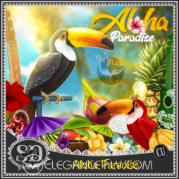 Aloha Paradise
