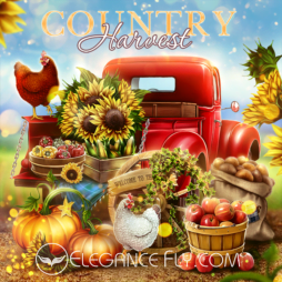 Country Harvest_From EleganceFly
